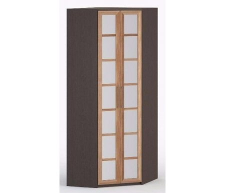 Шкаф угловой 45-60 СОЛО-030 с зеркалом венге / сливаШкафы<br><br>