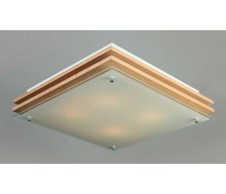 Накладной светильник OM-402 OML-40217-04Накладные светильники<br><br>
