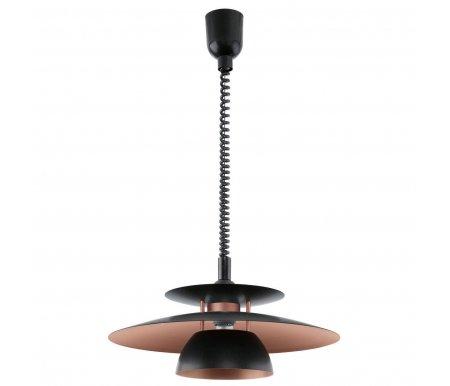 Подвесной светильник Eglo Brenda 31666Потолочные светильники<br><br>